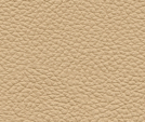 MB9008 - Golden Beige